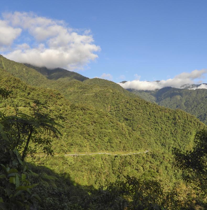 Trampolin de las Aves - Birding in Colombia - Putumayo