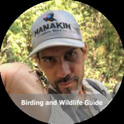 Alejandro Nagy - Birdwatching Colombia