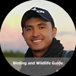 Camilo Orjuela - Amazon Birdwatching