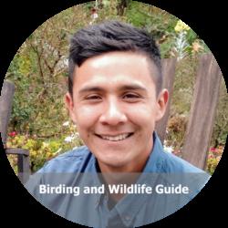 Michael Molina - Birding Colombia